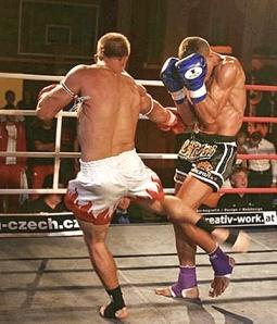 Low kick Treichel