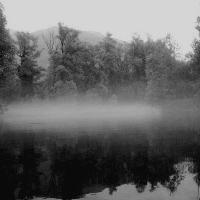 Hesse im Nebel