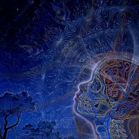 7 principles of Biocentrism