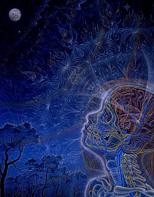 Biocentrism - Alex Grey