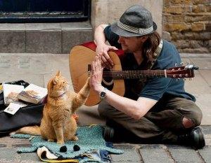 James-Bowen-Bob-The-Street-Cat