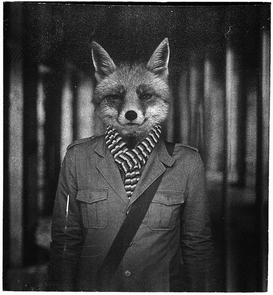 human_fox_by_firefoxiny-d6alkeq