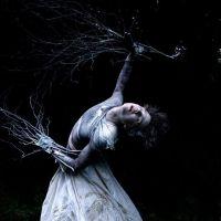 L'albero m'è penetrato nelle mani