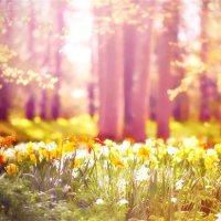 Spring break! 😊🌸