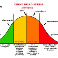 Fattori di stress e performance sportiva