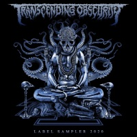 Transcending Obscurity label sampler 2020 💿
